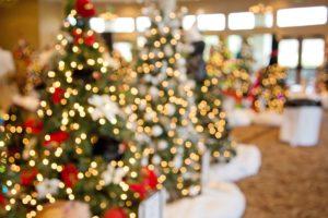 christmas-trees-1042542_1920
